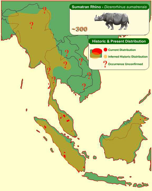 Historic distribution of the Sumatran rhino is Southeast Asia. From the International Rhino Foundation (IRF)