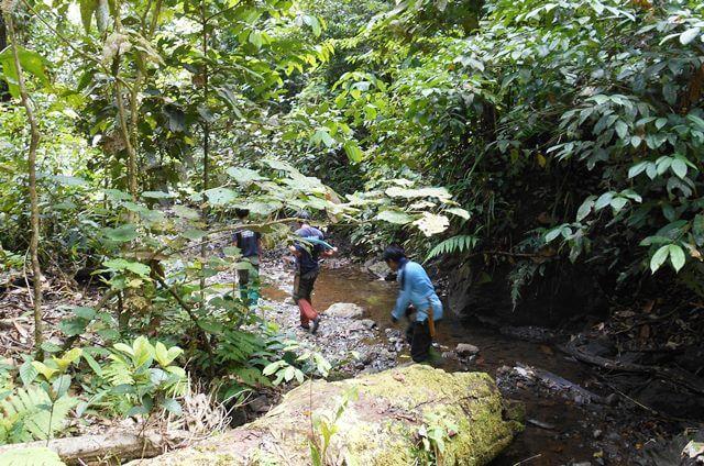 rsz Trail to the rhino trap
